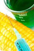 Corn next to a beaker — Stock Photo
