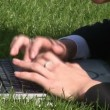 Woman lying on grass using laptop computer - Foto Stock