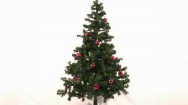 Stock Video Footage of a Christmas Tree Being Decorated