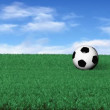 Soccerball on Grass — Stock Video