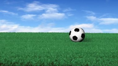 Soccerball on Grass — Stock Video #14805787