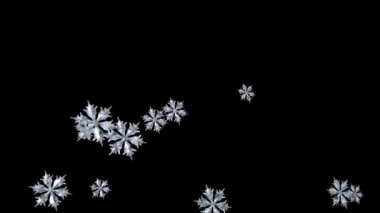 Falling Snowflake — Stock Video #14816067