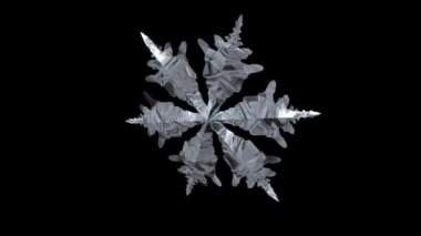 Snowflake Spinning — Stock Video
