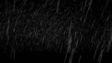 schneesturm — Stockvideo #14942431