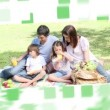 Royalty-Free Stock Vector Image: Montage about families in a park