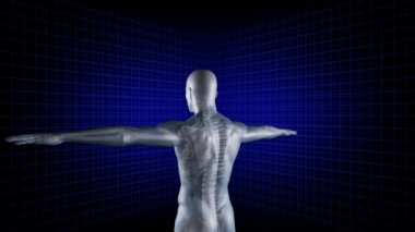 Digital man rotates with his arms outstretched — Stock Video