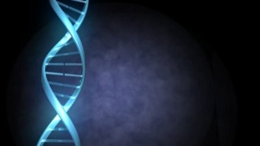 A strand of DNA rotates as the camera moves along it — Stock Video