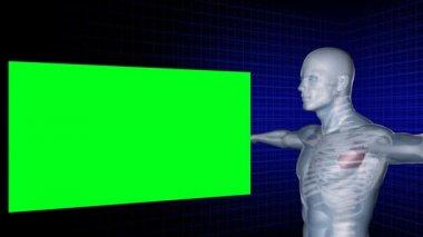 Digitale man draait met zijn armen gestrekt terwijl groene schermen worden weergegeven om hem heen — Stockvideo