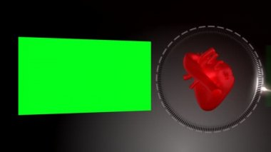 Heart beating and rotating as a green screen appears next to it — Stock Video
