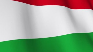 Bulgarian National Flag — Stock Video