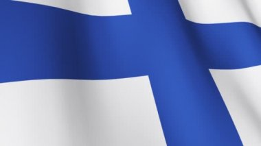 Isolated Blowing Flag of Finland — Stock Video