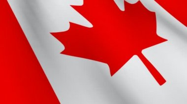 3D Animated Flag of Canada — Stock Video
