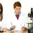 Royalty-Free Stock Vector Image: Scientists working in a laboratory