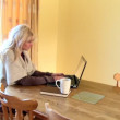 Stock Video: Enthusiastic woman using a laptop and drinking coffee