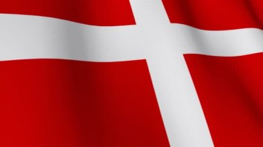 Danish Flag — Stock Video