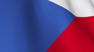 Flag of The Czech Republic — Stock Video