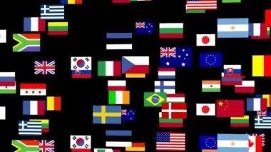 Bandiere del mondo animato — Video Stock