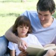 Father and son reading in a park  — Stock Video