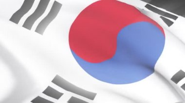 South Korean Flag — Stock Video