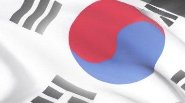 South Korean Flag — Stock Video