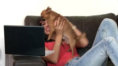 Blissful woman using a laptop sitting on sofa — Stock Video