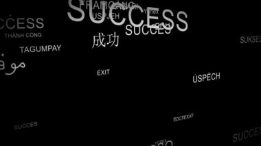 Word SUCCESS spelt in different languages — Stock Video
