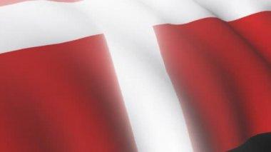 Danish flag — Stock Video