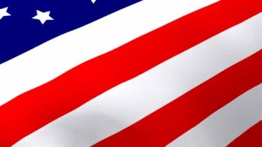 3D Rendered Flag of the United States — Stock Video