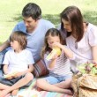Happy family having a picnic in a park — Stock Video #15423607