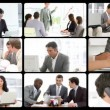 Stock Video: Montage presenting the concept of men in busines