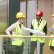 Architects studying a construction project — Stock Video #15424977