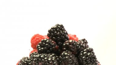 Cluster of rasberries and blackberries — Stock Video