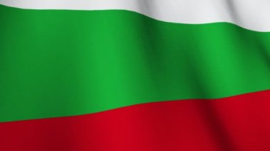 Bulgarian Flag — Stock Video #15423535