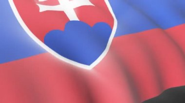 Slovak Flag — Stock Video