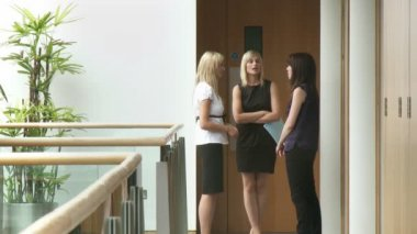 Three businesswomen speaking in work place — Stock Video