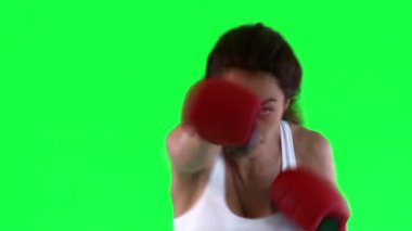 Athletic young woman boxing — Stock Video