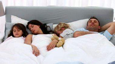 Leuke familie samen slapen — Stockvideo