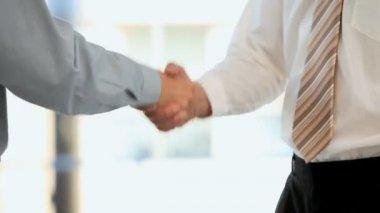 Businessmen shaking hands — Stock Video