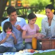 Attractive family having a picnic - Stock Photo