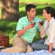 Royalty-Free Stock Vector Image: Couple drinking red wine on a picnic