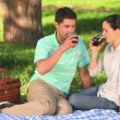 Attractive couple drinking red wine outdoors — Stock Video