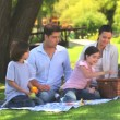 Family packing away their picnic things — Stock Video #15535437