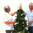 Couple decorating the Christmas tree — Stock Video #15537097