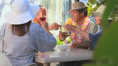 Elderly friends having an aperitif — Stockvideo