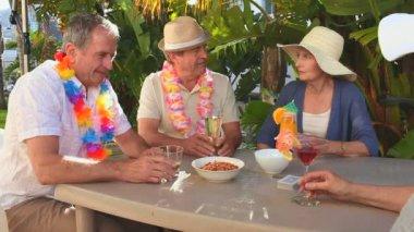 Senior friends taking an aperitif — Stock Video