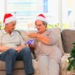 Royalty-Free Stock Imagen vectorial: Senior couple on Christmas day