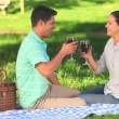 Lovers drinking red wine outdoors — Stock Video