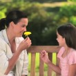 Mother and daughter playing with a flower — Stok video