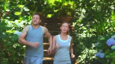 Couple running in a wood — Stock Video