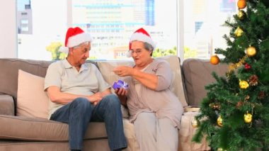 Senior couple on Christmas day — Stockvideo